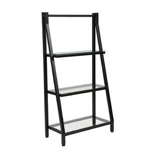 Poyner Glass Ladder Bookcase