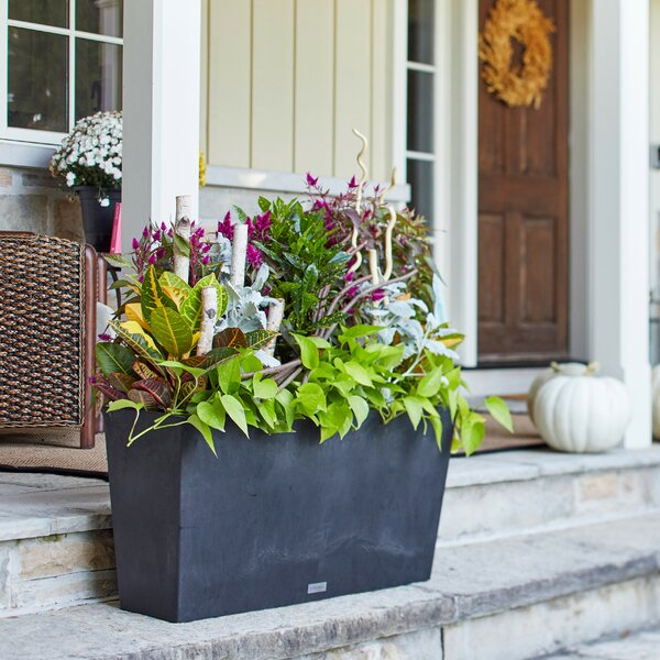 Midori Plastic Planter Box by Veradek