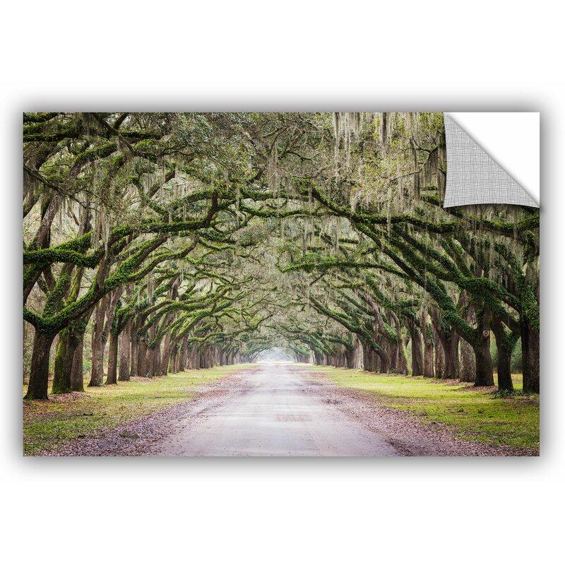 East Urban Home Oak Trees With Spanish Moss In Savannah Georgia Removable Wall Decal Wayfair