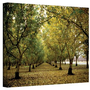 Fall Orchard  by Kathy Yates Photographic Print on Canvas by Charlton Home