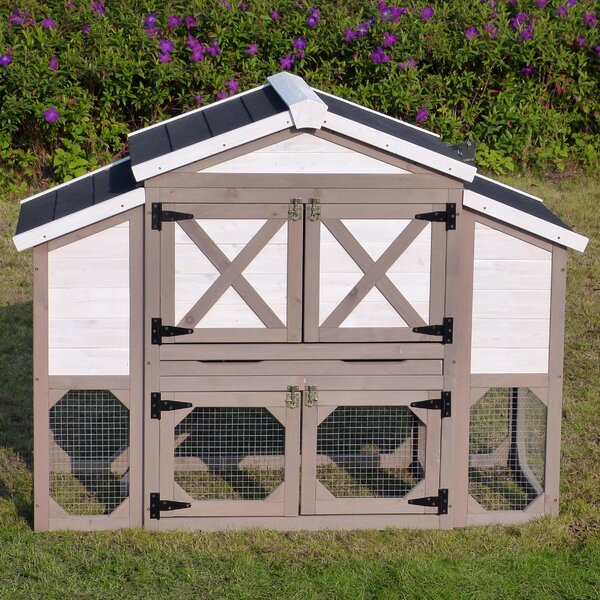 Aria Country Style Chicken Coop by Archie & Oscar