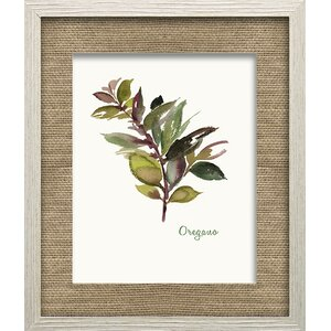 Oregano by Asia Jensen Framed Painting Print by Star Creations
