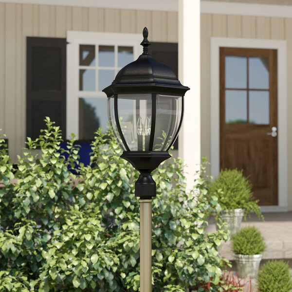 Oakhill 3-Light Matte Black Lantern Head by Charlton Home
