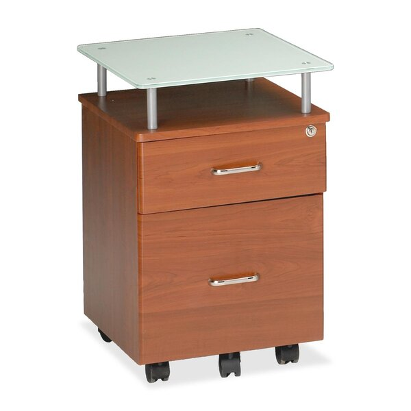 Vision 2-Drawer Mobile Vertical Filing Cabinet by Mayline Group