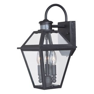 Great choice Warlo 1-Light Outdoor Wall Lantern By Darby Home Co