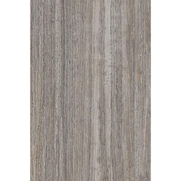 Thassos 16 x 24 Ceramic Field Tile in Silver by Interceramic