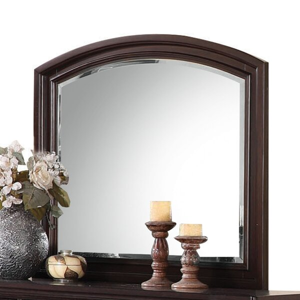 Traditional Arched Dresser Mirror by Darby Home Co