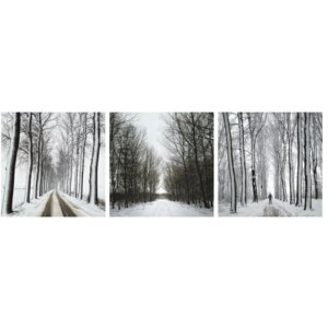'Winter Road Trio' Framed Photographic Print on Wrapped Canvas by Highland Dunes