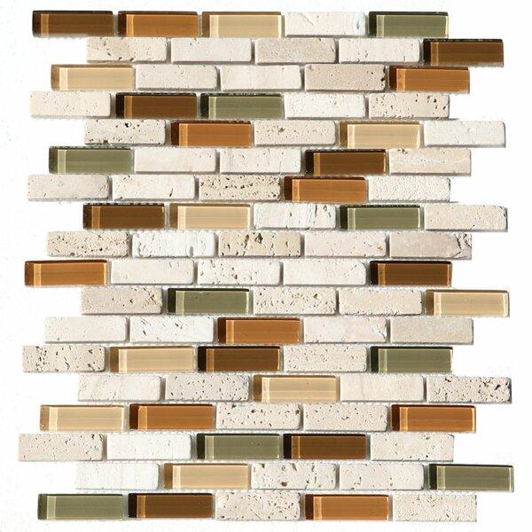 Paragon 12 x 12 Glass Mosaic Strip Tile in Harvest by Kellani