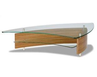 Fin Coffee Table by BDI