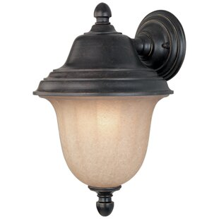 Big Save Teminot 1-Light Outdoor Sconce By Bloomsbury Market