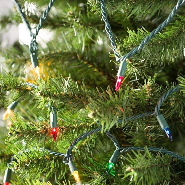 Wayfair Basics 6 Lead 100 Mini Bulb String Lights by Wayfair Basics™