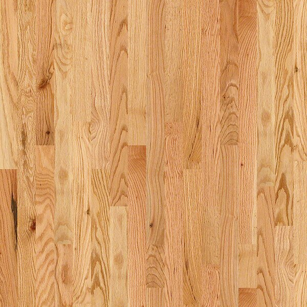 3-1/4 Solid Oak Hardwood Flooring in Natural by Welles Hardwood
