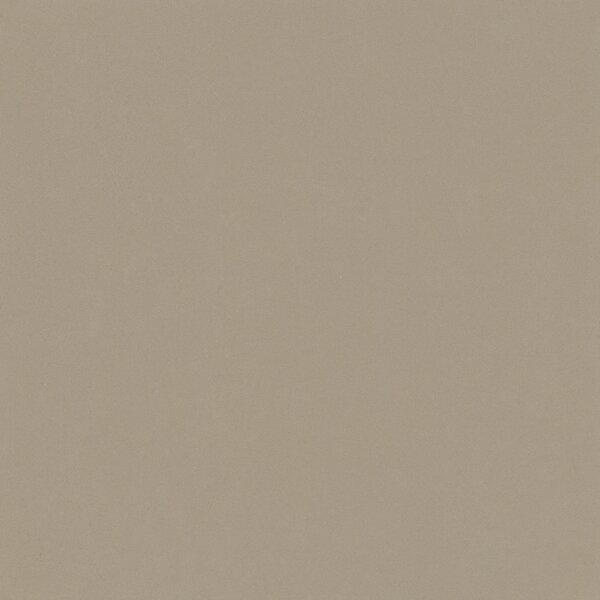 Element 24 x 24 Porcelain Field Tile in Latte Light Brown by Walkon Tile
