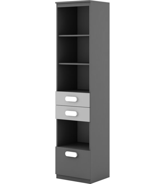 Cannella Standard Bookcase By Ivy Bronx