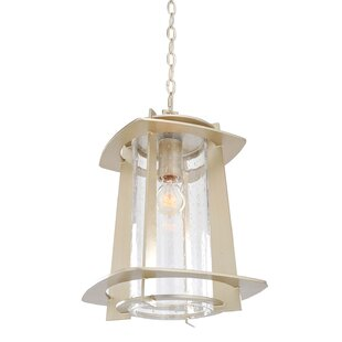 Inexpensive Shelby 1-Light Outdoor Hanging Lantern By Kalco