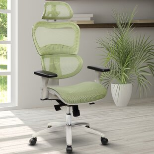 Awe Inspiring Eure Deluxe Mesh Office Chair Ocoug Best Dining Table And Chair Ideas Images Ocougorg