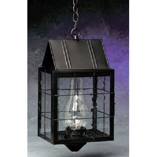 Price comparison 300 Series 1-Light Outdoor Hanging Lantern By Brass Traditions