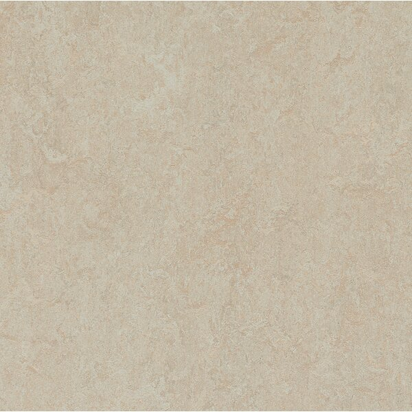 Marmoleum Click Cinch Loc 11.81 x 35.43 x 9.9mm Cork Laminate Flooring in Tan by Forbo