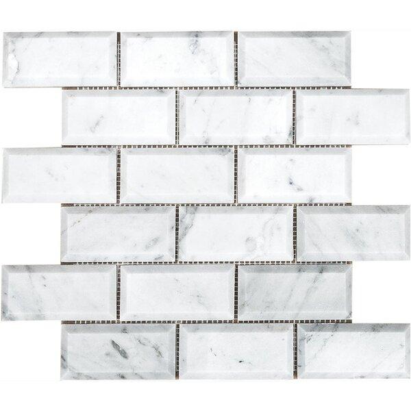 Carrara Beveled Brick 2 x 4 Stone Mosaic Tile in White Polished by Parvatile