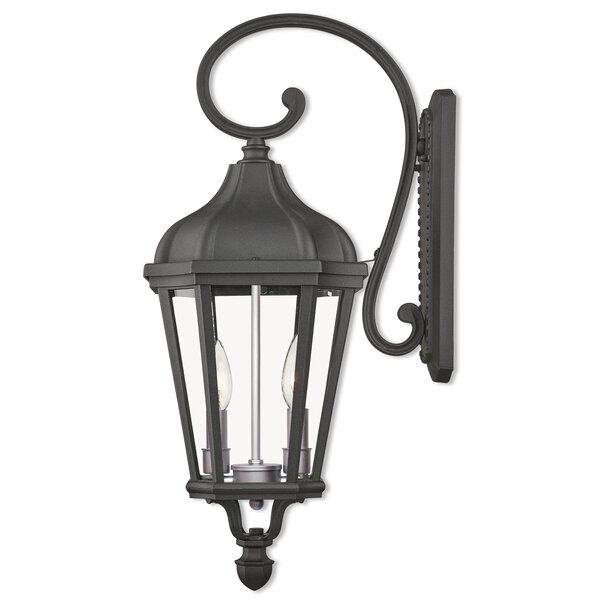 DeMotte 2-Light Outdoor Wall Lantern by Darby Home Co
