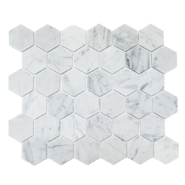 Honeycomb Hex Polished 2 x 2 Mosaic Tile in Bianco Carrara by Ephesus Stones