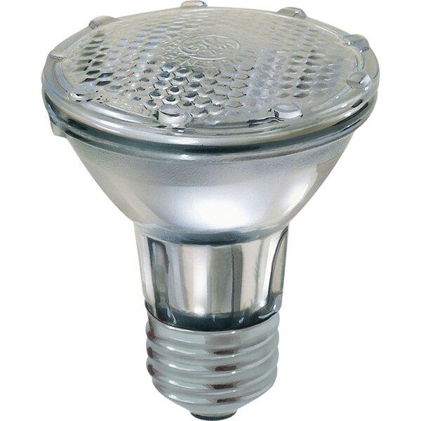 38W Grey Halogen Light Bulb by GE Lighting