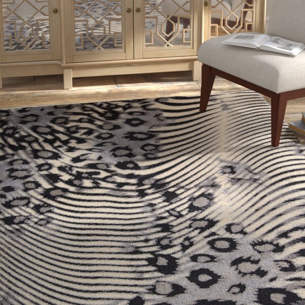 Pismo Beach Pinto Rug by Bloomsbury Market