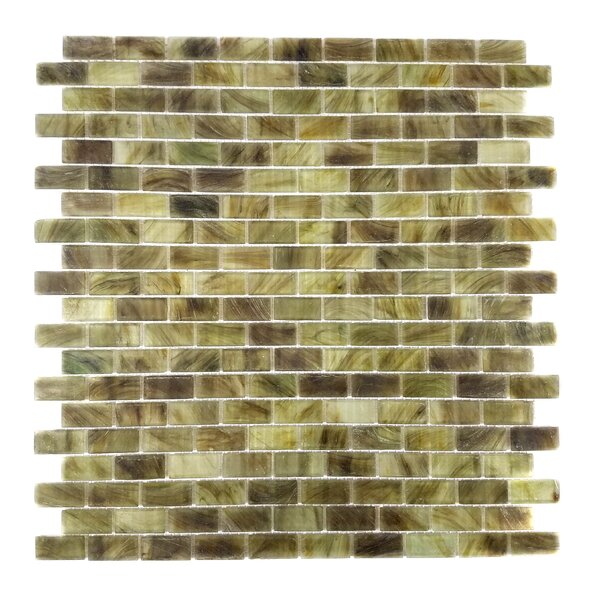 Amber 0.63 x 1.25 Glass Mosaic Tile in Gray Brown by Abolos
