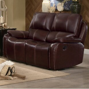 Beyonce Upholstered Dual Recliner Loveseat