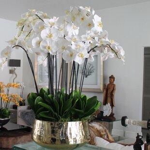 Artificial White Orchids Wayfair