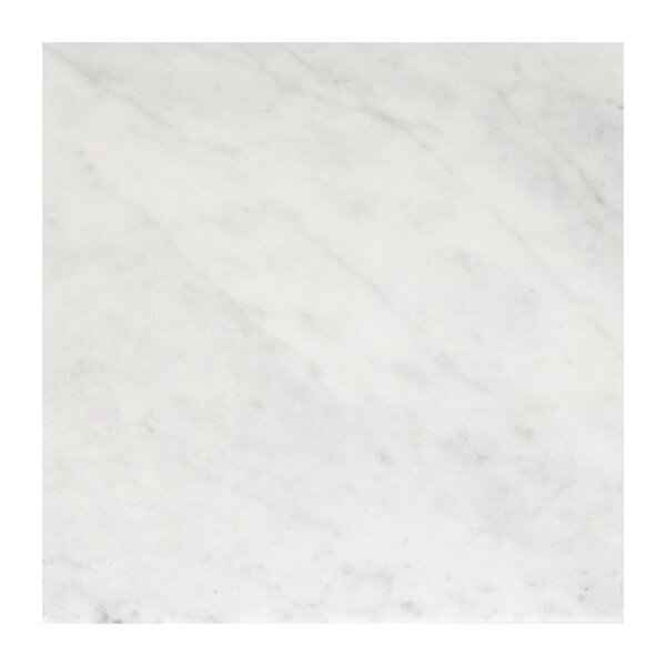 Imperial Carrara 12 x 12 Marble Field Tile in White by Seven Seas