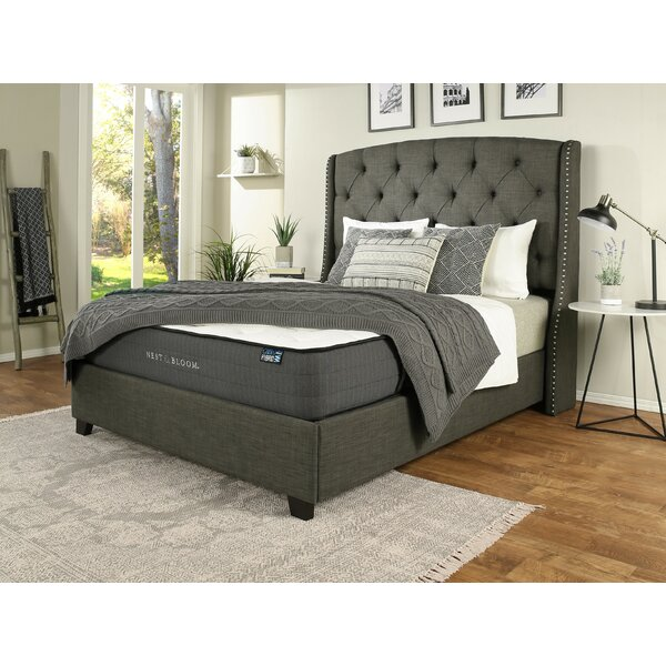 Chenery Upholstered Platform Bed with Mattress by Darby Home Co