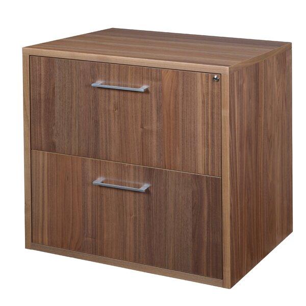 Hilburn 2-Drawer Vertical Filing Cabinet by Red Barrel Studio