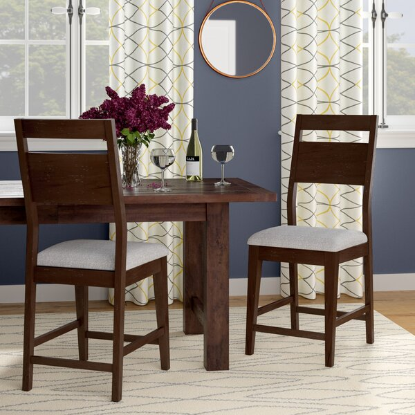 Farrington Gurney Transitional Dining Chair (Set of 2) by Brayden Studio