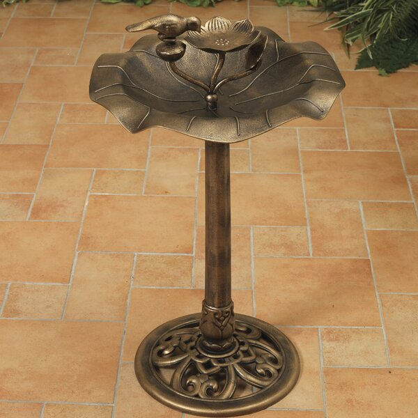 Resin Birdbath by Gerson International