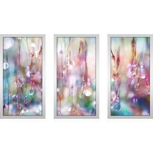 Rainbow Rain Catcher by Sharon Johnstone 3 Piece Framed Photographic Print Set by Picture Perfect International