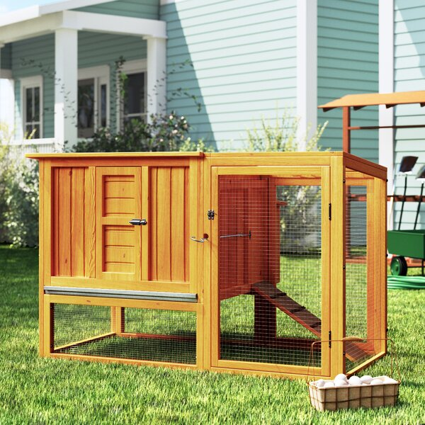 Bartholomew Chicken Coop with Nesting Box and Outd