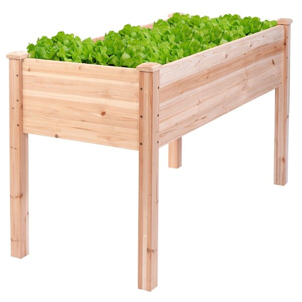 Drakeford Garden Bed Raised Wood Planter Box by Gracie Oaks