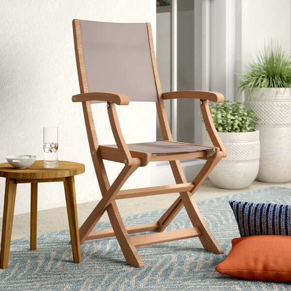 Aidan Folding Teak Patio Dining Chair (Set of 2) by Mistana