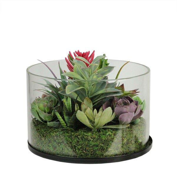 Artificial Desktop Mixed Succulent Arrangement Plant in Jar by Bungalow Rose