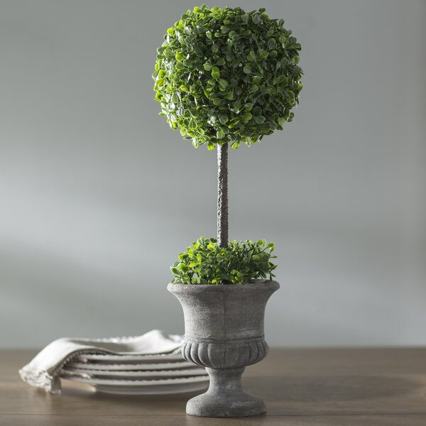 Boxwood Foliage Topiary in Urn by Lark Manor