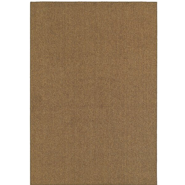 Carrow Brown Indoor/Outdoor Area Rug by Charlton Home