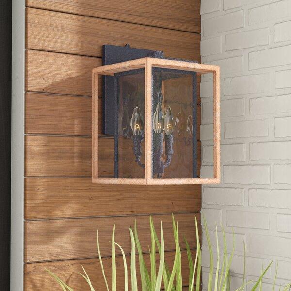Brandie 3-Light Metal Outdoor Wall Lantern by Trent Austin Design