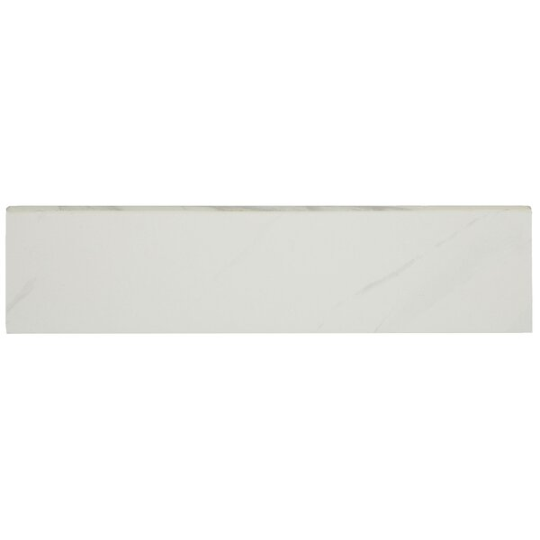 Florentine 12 x 3 Porcelain Bullnose Tile Trim in Carrara by Daltile