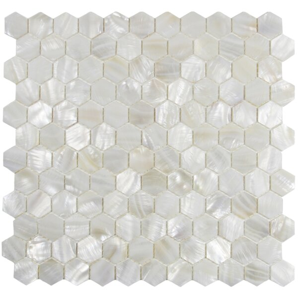 Arctic 1 x 1 Seashell Mosaic Tile in White by CNK Tile