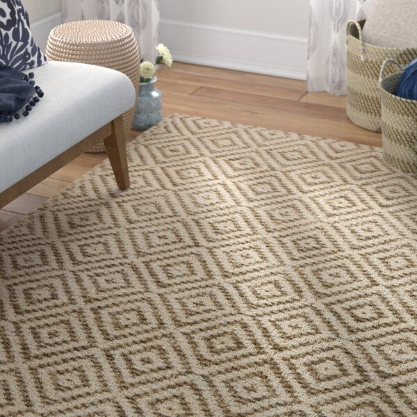 Godfrey Hand-Woven Bleach/Gray Area Rug by Bungalow Rose