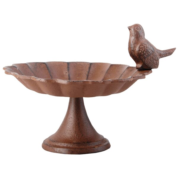 Pierson Cast iron Bird Feeder Birdbath by Best For Birds