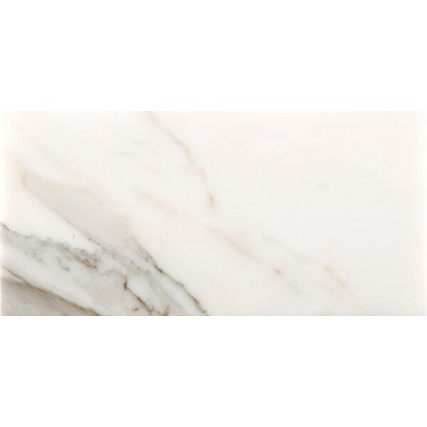 Marble 12 x 24 Field Tile in Calacata Oro by Emser Tile