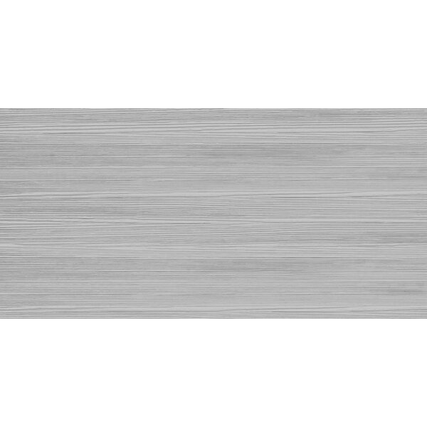 Surface 12 x 24 Porcelain Tile in Linear Gray by Emser Tile